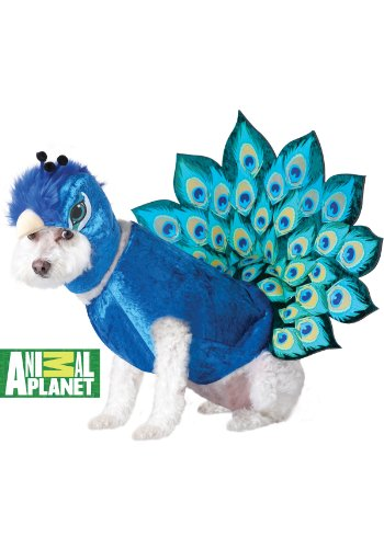 Animal Planet Peacock Dog Costume, X-Small, Multicolor