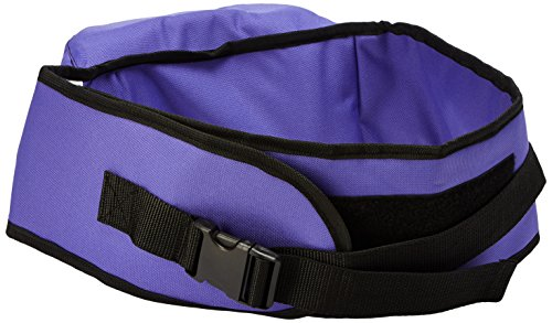 Pomfitis Side Ride Baby Toddler Hip Seat Carrier, Purple