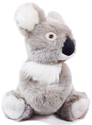 Koolie the Koala | 10 Inch Stuffed Animal Plush | By Tiger Tale Toys