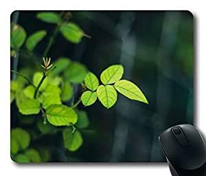 Rose Leaves 2 Mouse Pad Desktop Laptop Mousepads Comfortable Office Mouse Pad Mat Cute Gaming Mouse Pad