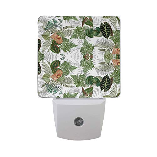 2 Pack LED Night Lights Plug-in Nightlight with Dusk to Dawn Sensor Soft White Glow for Kids Adults Room, Hallway Bathroom Kitchen[Islands Ferns Leaves Flowers] ()