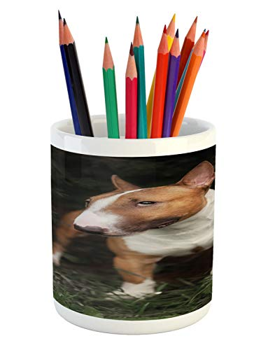 - Lunarable Bull Terrier Pencil Pen Holder, Blurred Backdrop Close up Short Haired Breed Dog Outdoor Photo, Printed Ceramic Pencil Pen Holder for Desk Office Accessory, Camel White Olive Green