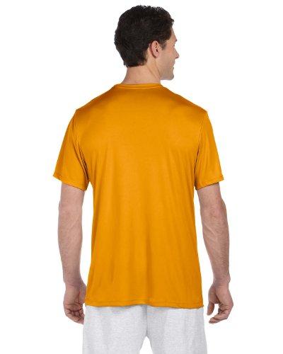 Hanes Cool DRI TAGLESS Men's T 2PK (Short Hanes Womens V-neck)