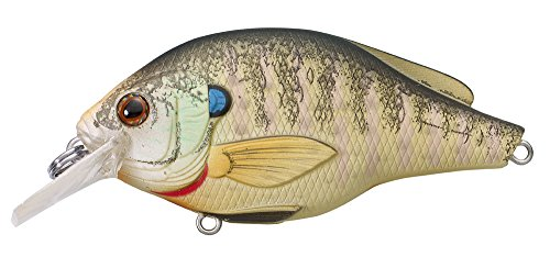 Koppers Flat Sided Square Bill Crank Lure  2 3 8 Inch  Bluegill Natural