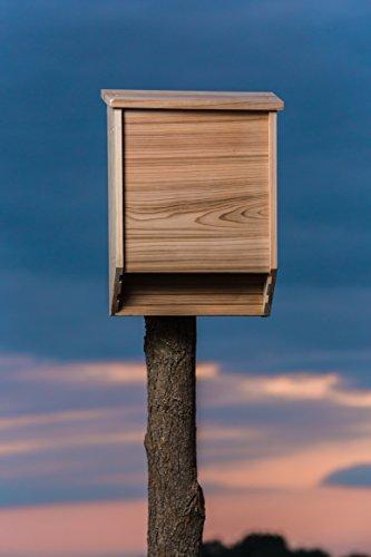 Big Bat Box 2-Chamber Cedar Bat House (Brown) by Big Bat Box (Image #6)