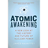 Atomic Awakening: A New Look at the History and Future of Nuclear Power (English Edition)