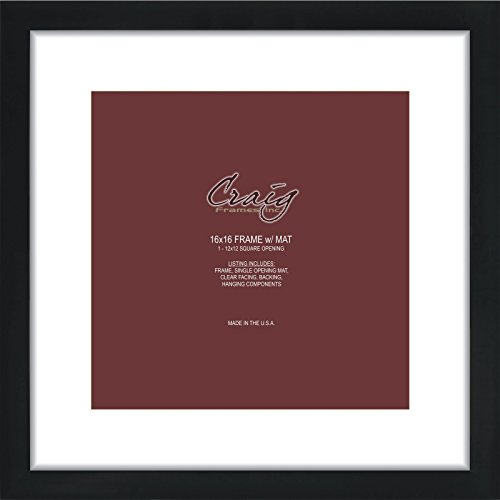 Craig Frames 16 by 16-Inch Black Picture Frame, Single White Mat with 1-12 by 12-Inch Square ()