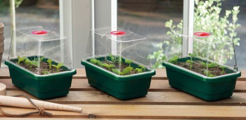 Garland GAL18MP3 Mini High-Dome Propagators - Green (Set of 3)