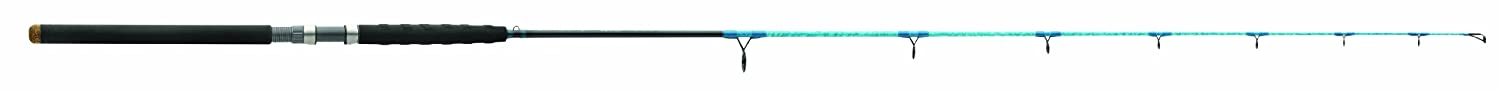 Wright McGill Blair Wiggins S-Curve Offshore Light Spin Fishing Rod, 7-Feet, Flats Blue