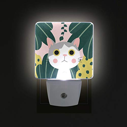 Cat Kitty Jungle LED Night Lights with Auto Dusk to Dawn Sensor, Plug-in Warm White Wall Lights for Kids Room