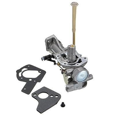 PROCOMPANY Carburetor for Briggs and Stratton 136202 136212 136217 136232 137202 137212 Series free Gaskets: Automotive
