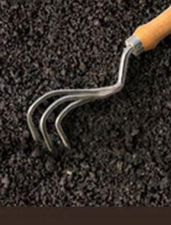 Burgon & Ball Claw Cultivator