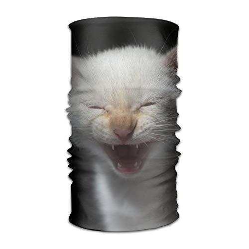 - Fashion New Headwear Headband Cute Kitten Head Scarf Wrap Sweatband Sport Headscarves For Men Women