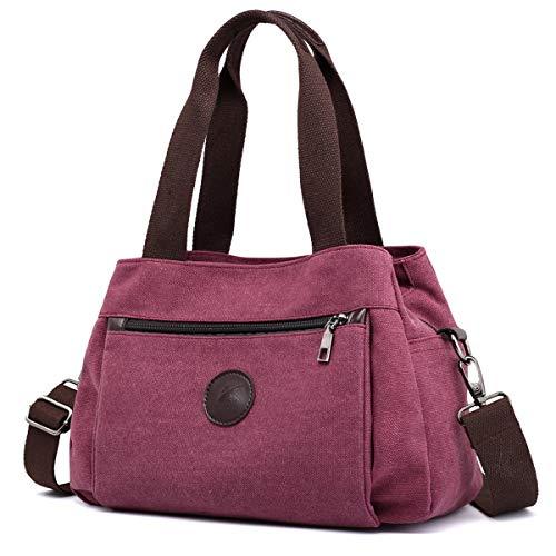 DOURR Hobo Handbags Canvas Crossbody Bag for Women, Multi Compartment Tote Purse Bags (Purple Coffee), Medium ()