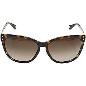 COACH Women's 0HC8084 Brown Sunglasses