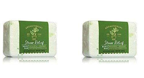 Bath & Body Works 2-Pack Stress Relief Body Bar - Eucalyptus & Spearmint (Stress Relief Soap Bar)