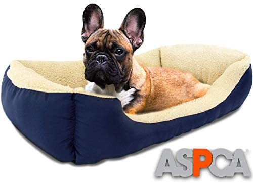 Best Dog Bed Boston Terrier Microtech Dog Bed For Small To Medium Pets