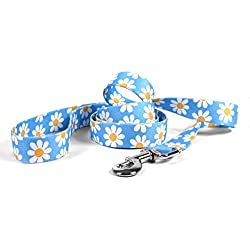 "Yellow Dog Design Blue Daisy Dog Leash 1"" Wide and 5' (60"") Long, Large"
