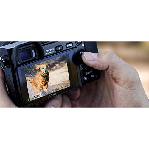 Sony a6000 Mirrorless Zoom Accessory