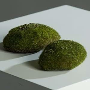 Musgo verde plato placa de hierba artificial planta artificial, 12,5 cm