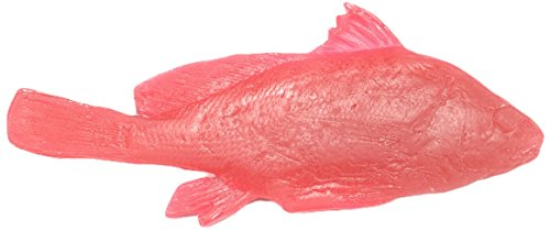 "Nasco 9712005 Life/Form Fish Replica Rubber Stamp, Freshwater Drum, Left Side, 10"" Length x 4-1/2"" Width"