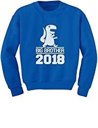 TeeStars - T-Rex Boy Gift for Big Brother 2018 Youth Kids Sweatshirt