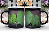 Amymami Personalized Gifts Heat Changing Magic Coffee Mug - Giloy Plant Rainy Day Leaf Focus Leaves