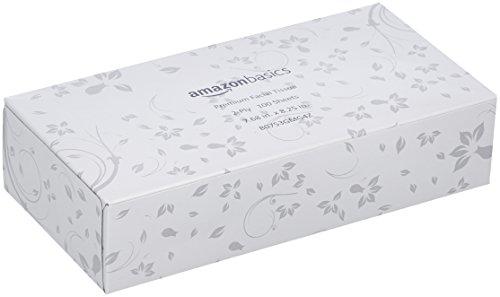 AmazonBasics Professional Facial Tissue Flat Box for Businesses, 2-Ply, White, 100 Tissues per Box, 30 Boxes by AmazonBasics (Image #1)