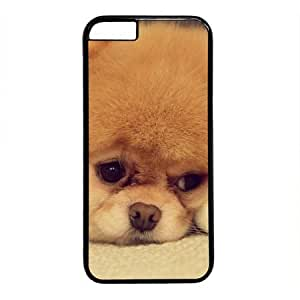 Pomeranian Puppy is Cute Black Sides Hard Shell Case for Iphone4s by Sakuraelieechyan