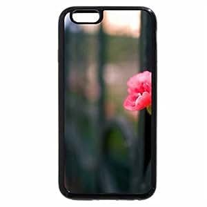 iPhone 6S Plus Case, iPhone 6 Plus Case, Roses