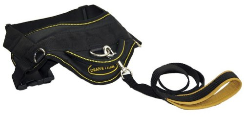 "Dean and Tyler Combo – One ""DT Harness"" Yellow X-Large (34″ – 47″) With One Matching ""Padded Puppy"" Leash, 6 FT Stainless Steel Snap Hook – Black, My Pet Supplies"
