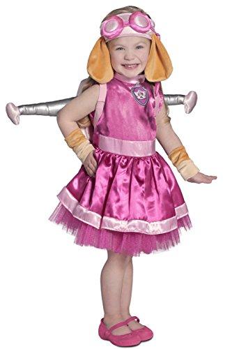 Skye Costumes (Princess Paradise Paw Patrol Skye Costume, Pink, X-Small)