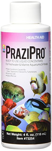 Hikari Usa AHK73254 Prazipro for Aquarium, 4-Ounce by Hikari Usa Inc.