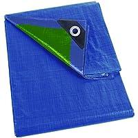 Perel 5 x 8 m Dekzeil - Blauw/Groen