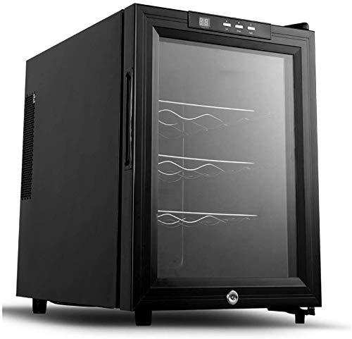 Compra TYUIO Bebidas refrigerador y Cooler - 12Can mini nevera con ...