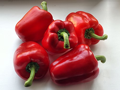 20 Red Bell Pepper Seeds (Capsicum Annuum) Sweet (Largest Wind Farm)
