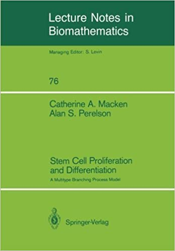 Book Stem Cell Proliferation and Differentiation: A Multitype Branching Process Model (Lecture Notes in Biomathematics) by Catherine Macken (1988-01-01)