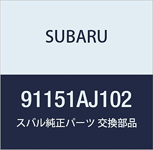 SUBARU (スバル) 純正部品 ルーフ レール アセンブリ ライト フォレスター 5Dワゴン 品番91151SC000 B01MYV2PPN フォレスター 5Dワゴン|91151SC000  フォレスター 5Dワゴン