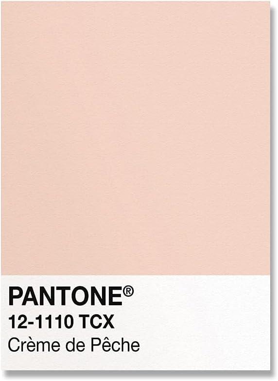 Pantone color carta patrón impresión cartel rosa amarillo verde moderno salón pared artista sin marco lienzo pintura A5 20x30 cm