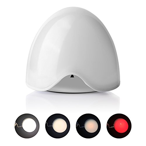 Multifunction ABS Cute UPERFECT Lamp Night Light 4-Modes with Anion Purifier Filter Humidifier Egg for Girls Women Bedroom Nursery Adjustable Brightness with Plug-In Night Light