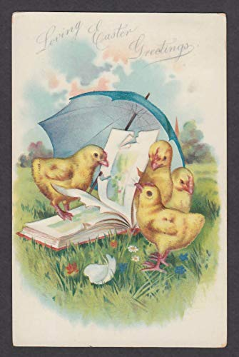 Loving Easter Greetings chicks peck apart picture book embossed postcard 1908 ()