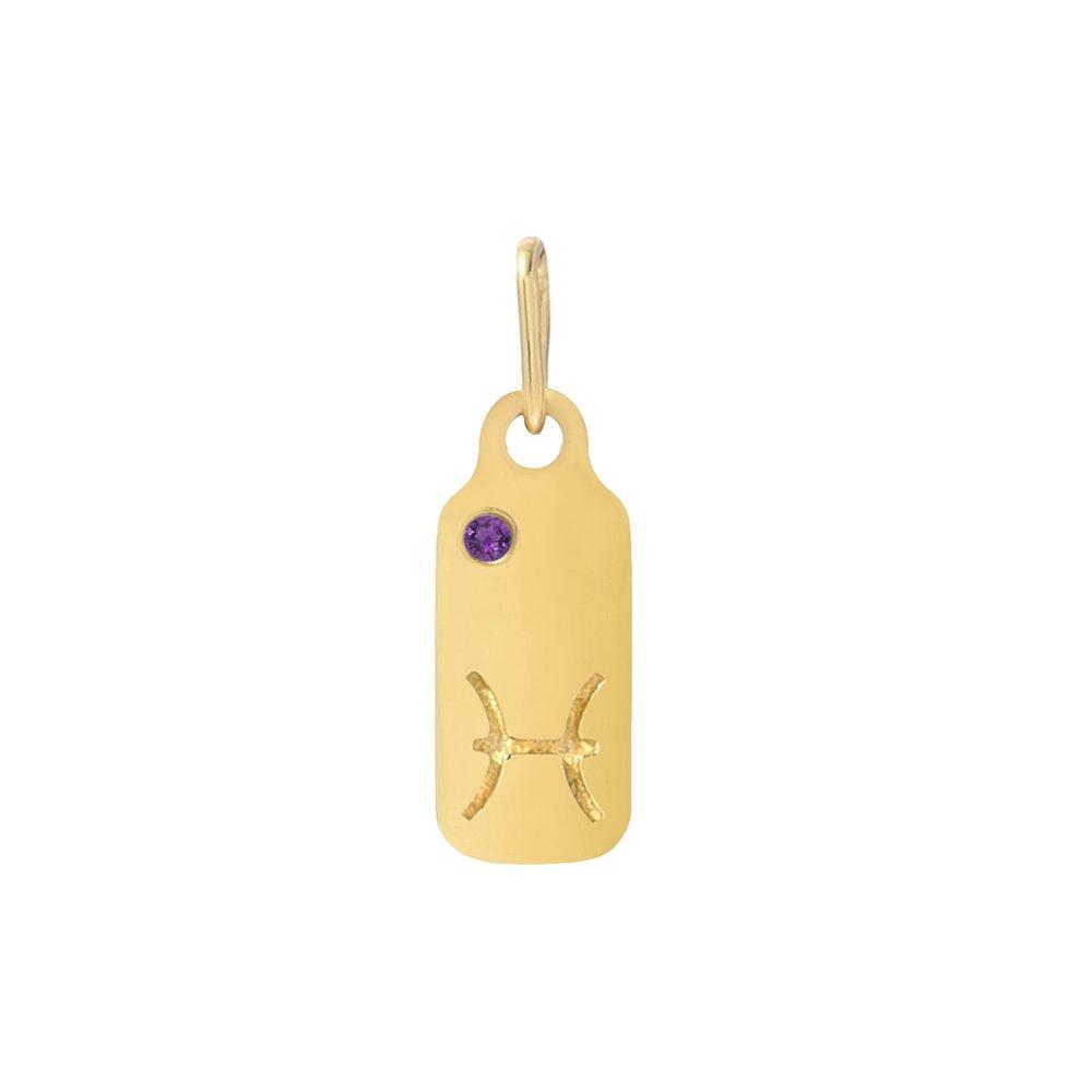 Mini Mini Jewels 14k Gold Dazzling Amethyst Birthstone Set Zodiac Pisces Dog-tag Pendant Nacklace