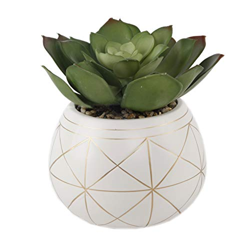 Flora Bunda Mid Century Artificial Plants Artificial Succulent in 6.5 Inch Round Geometric Hand Painted Planter with…