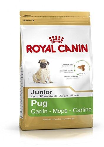 1.5KG Royal Canin Pug Junior Complete Dog Food