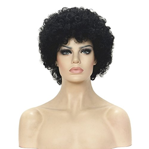 Lydell Afro Short Curly Puff Kinky synthetic Hair Wig For Women