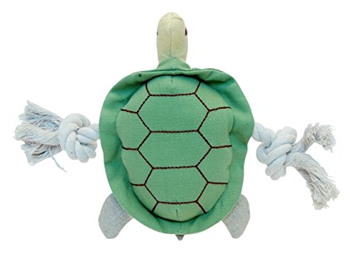 Simply Fido Little TIO Turtle Toy, 9