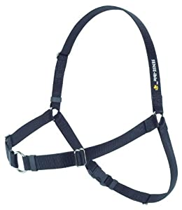 SENSE-ible No-Pull Dog Harness - Black Large