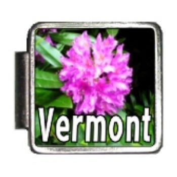 Vermont State Flower Red Clover Photo Italian Charm Bracelet Link