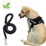 Dog Harness and Dog Leash Set No Pull Pet Harness Adjustable Vest Harness Dog Leash Puppy Harness Night-light Dog Pet Harness with Soft Mesh Nylon Dog Chest Harness for Small Medium Large Dogs Cat (L)