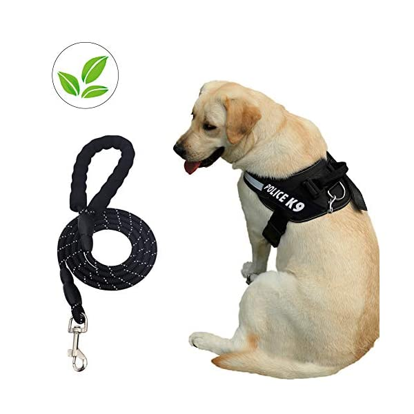 Dog Harness and Dog Leash Set No Pull Pet Harness Adjustable Vest Harness Dog Leash Puppy Harness Night-light Dog Pet Harness with Soft Mesh Nylon Dog Harness for Small Medium Large Dogs Cat 1